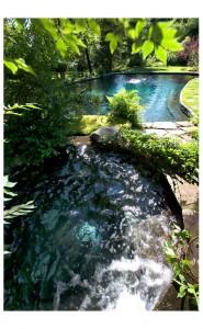 Aquatic Designs Elitzer Pool Great Barrington, MA